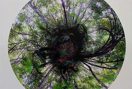 Flinders Johnston ('12), Stereographic photograph - 360 photographs stitched together to make a sphere, 2012.
